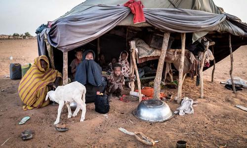 Как при нумидийских царях. Рабство в Мавритании всё ещё существует