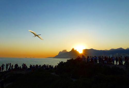В Бразилии из-за непогоды погибли, по меньшей мере, семь жителей