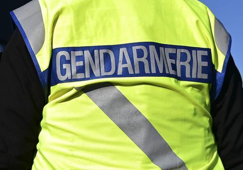 Во Франции жандармы приехали на вызов и «отловили» плюшевую пантеру