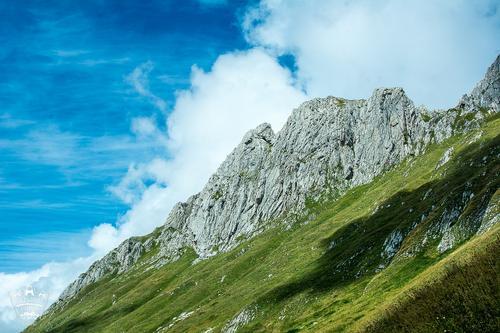 В АТОР назвали сроки открытия курортов в Абхазии