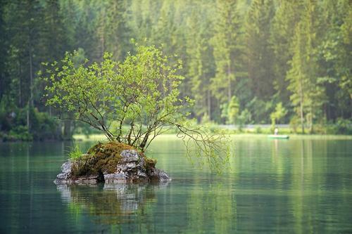 Пятно из нефтепродуктов обнаружено в реке Сходне в Москве
