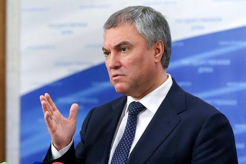 Володин предложил проанализировать выполнение поручения президента