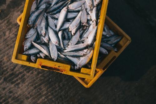 Почему рыбу нужно разделывать в перчатках
