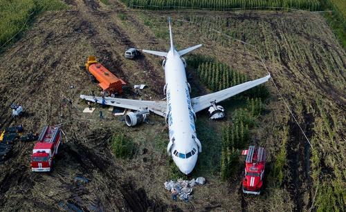 Жительница Тверской области рассказала, как она выжила после жесткой посадки самолета на кукурузное поле