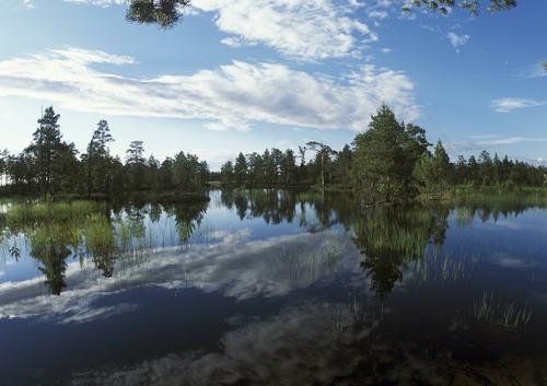 Подросток утонул в реке в Омской области, спасая двух девушек