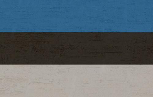 В Эстонии новобранцев учат защищаться от «российской угрозы»
