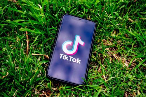 Microsoft приостановила переговоры о приобретении TikTok из-за позиции Трампа
