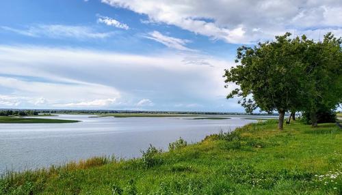 Жители Самары объявили войну чиновнице, отнявшей у них часть берега Волги