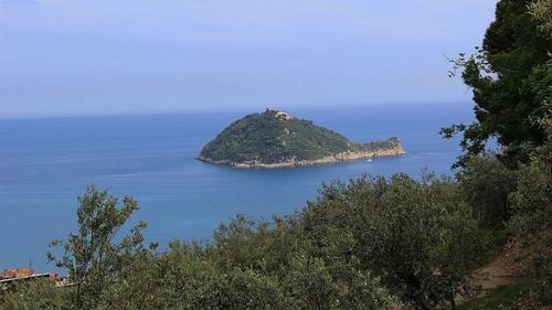Министерство культуры Италии очень заинтересовало приобретение острова сыном украинского олигарха