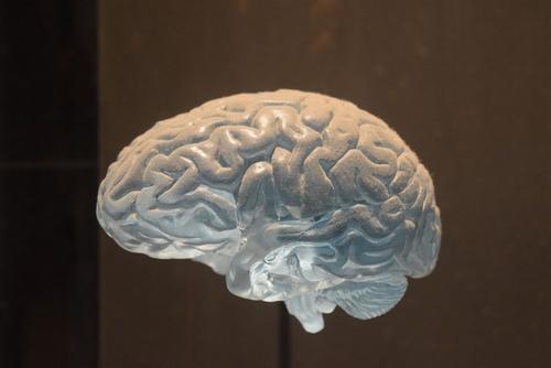 Врач сообщила о влиянии COVID-19 на мозг и ЦНС