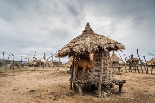 Намибия отказалась от немецкой компенсации за колониальный гнёт
