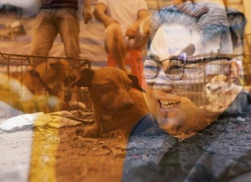 «Нет еды? Съешьте вашего питомца». Ким Чен Ын предложил «необычный» способ борьбы с голодом в КНДР
