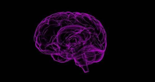 Рефлексотерапевт рассказал о легком способе улучшить работу мозга