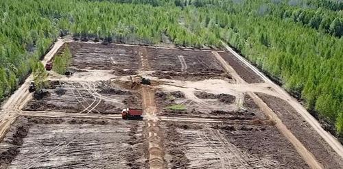 В Хабаровском крае эксгумировали полторы сотни могил