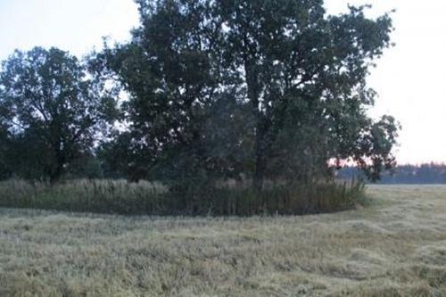 В Самарской области охотник по ошибке застрелил напарника