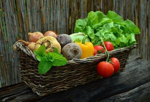 Врач-диетолог Пугачева сообщила, что салаты и пряные овощи способствуют похудению