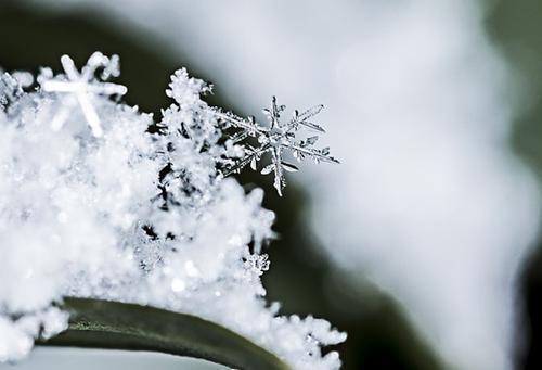 В Екатеринбурге выпал первый снег