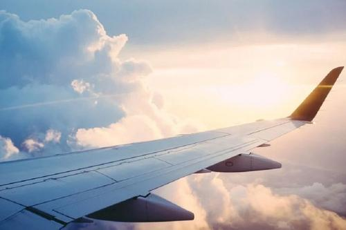 Самолет Майкла Пенса столкнулся с птицей и вернулся в аэропорт