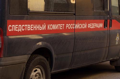 Пропавшая в Свердловской области трехлетняя девочка найдена мертвой
