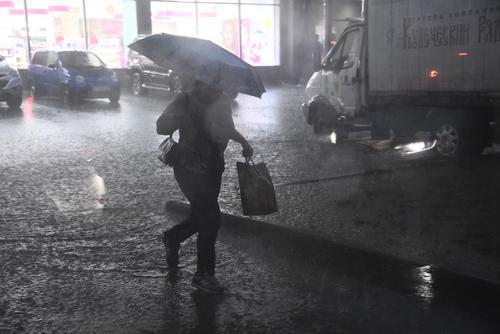 В Москве за ночь выпало более 15% месячной нормы осадков