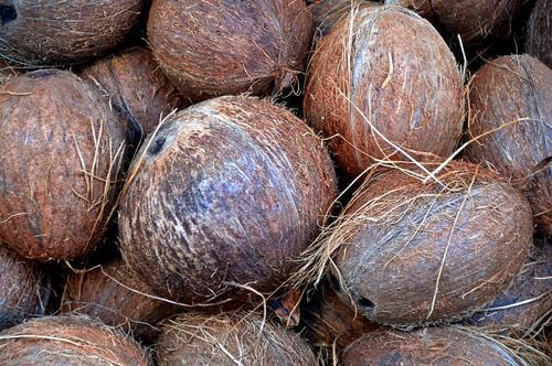 IВТ: Ученые выявили способность кокосового масла уничтожать коронавирус COVID-19