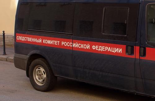 Мать «похищенного» в Челябинске ребенка призналась, что на самом деле малыш скончался