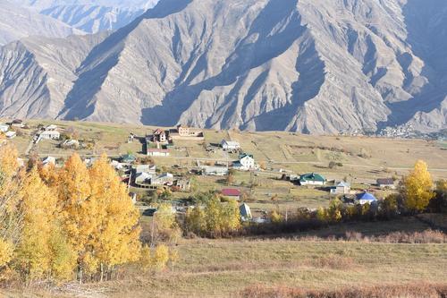 В Дагестане пять человек госпитализированы с подозрением на сибирскую язву