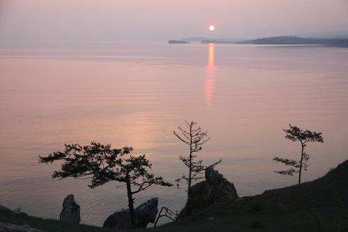 За 2020 год в Байкал запустили более 500 миллионов ценных рыб - мальков