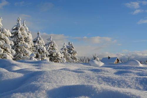 Московских туристов накрыло снегом в горах Абхазии