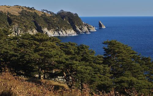 Японскому морю присвоят цифровой код