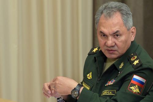 Шойгу назвал заявления министра обороны ФРГ нападками школьницы
