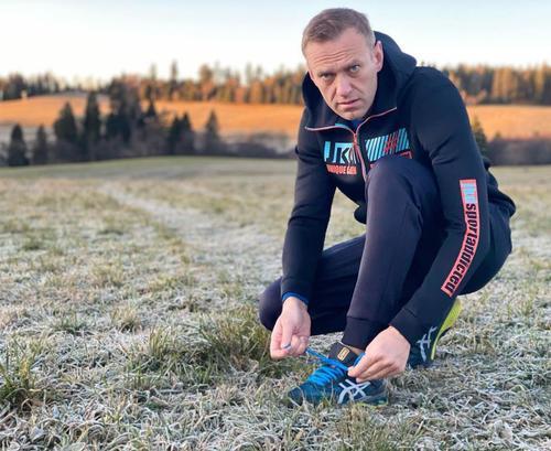 Навальный уже купил билет на рейс