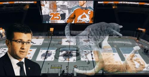 В США диктор хоккейной арены в перерыве матча НХЛ разложил на льду «Косынку»
