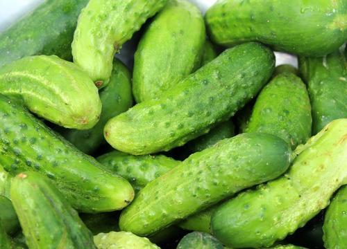 Овощи прямой формы могут стать «премиальными», а экономклассу достанутся кривые огурцы и мелкая картошка