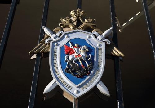 СК и ВС РФ оценили проект о лишении свободы за вовлечение подростков в митинги
