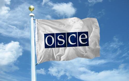 Наблюдатели ОБСЕ не заметили российских военных в Донбассе