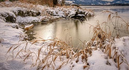 Петербургская семья с маленьким ребенком едва не замерзла на озере в Карелии
