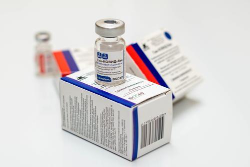 Президент Чехии попросил Путина о поставках вакцины «Спутник V»