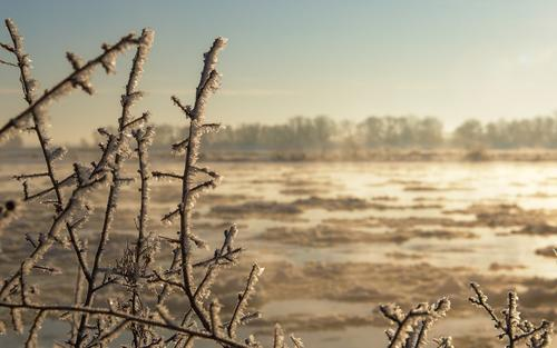 На Сахалине двенадцать рыбаков унесло в море на льдине