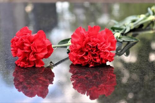Толстой рассказал, как умер Курбатов: с букетом цветов в руках жене