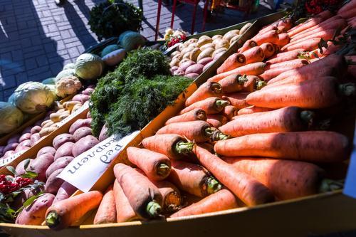 Сельскохозяйственная выставка пройдет в Челябинске