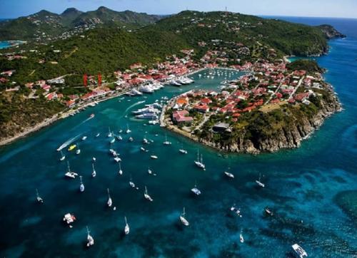 Владения влиятельной семьи из России обнаружили на «острове миллионеров»