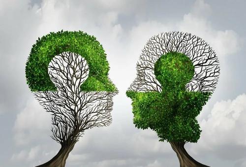 Как связаны экология и психология