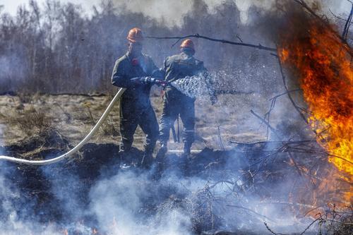 В Челябинской области зафиксированы первые лесные пожары