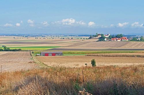 Украинский аналитик Андрей Золотарев предупредил, что из-за открытия рынка земли Украине грозит потеря аграрного потенциала
