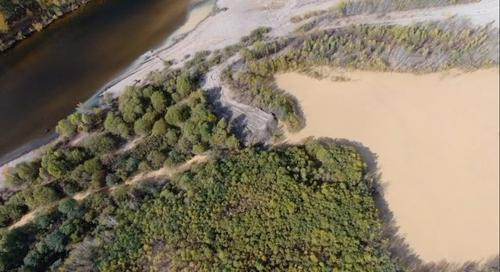 Золотодобытчики заплатят за загрязнение реки 113 млн рублей