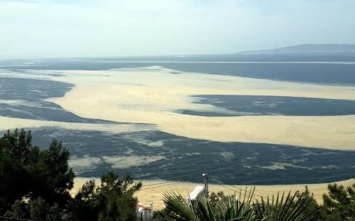 Мраморное море покрылось «морской слюной»
