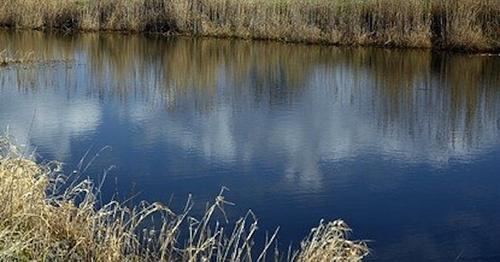В реке под Нижним Новгородом нашли тело пропавшего накануне мальчика