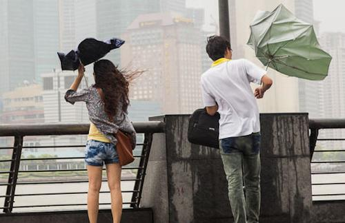 В Китае более 26 тысяч семей оказались в зоне бедствия из-за урагана