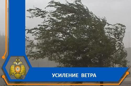 В сети появились видео, как на Астрахань обрушилась песчаная буря